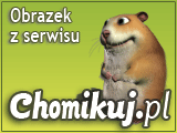 Nowy Rok - sylw.szamp.104.png